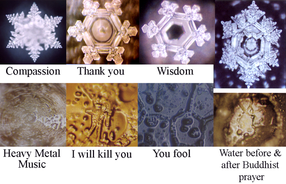 Masaru_Emoto_water